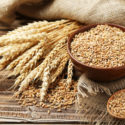 Godumalu(wheat) premium quality -1 kg