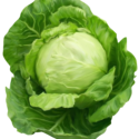 Green Cabbage 1 pc