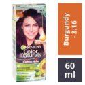 Garnier Color Naturals 3.16 Burgundy Hair Colour – 60 ml + 50 gms : 1 Unit